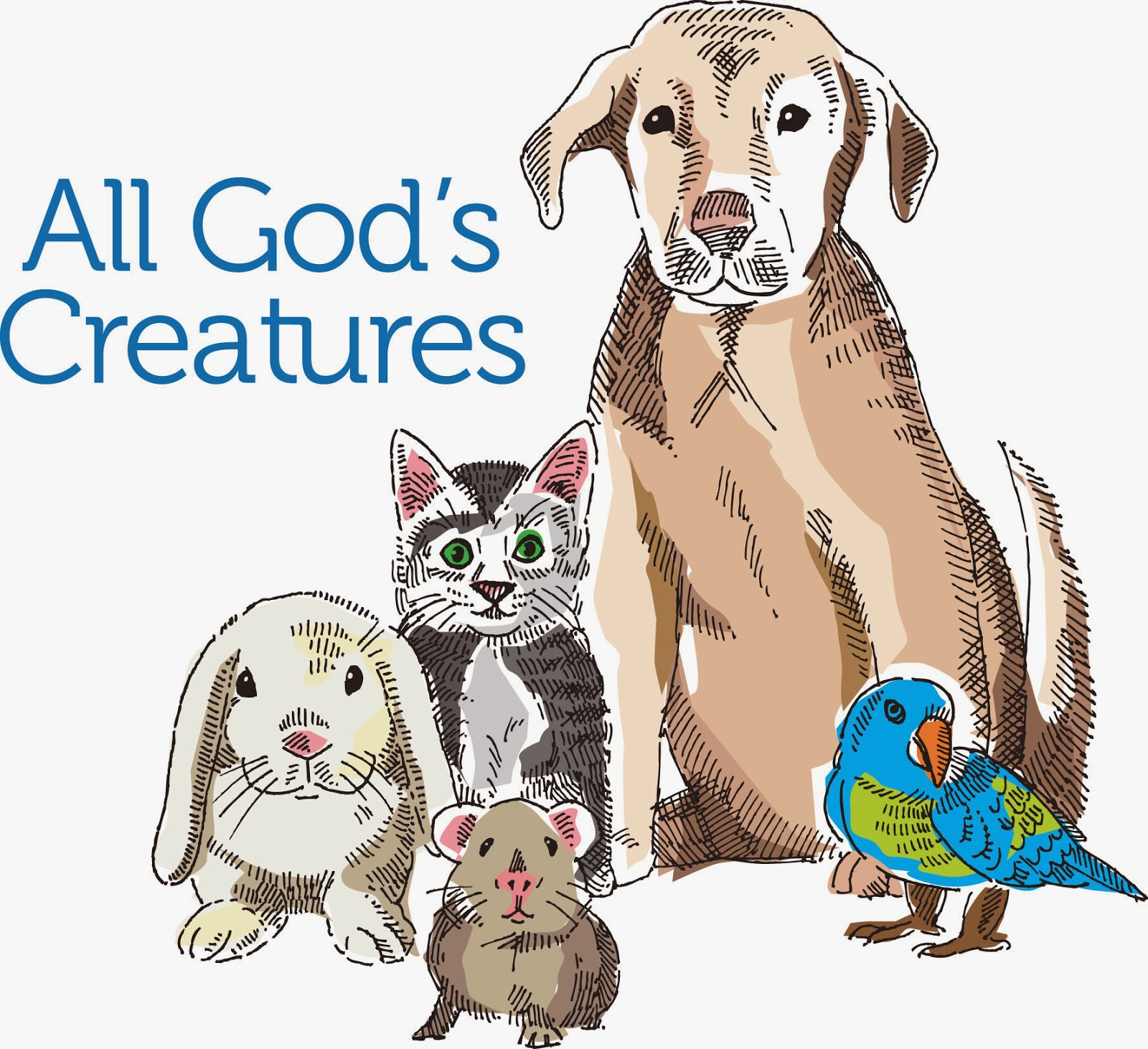 St Mary's Blog: Blessing of the animals on Saturday Oct 4.