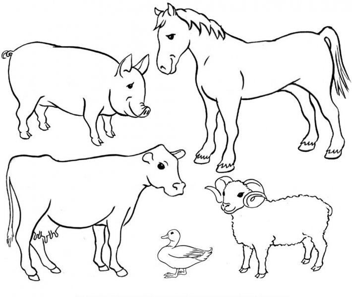 Farm Animals Clipart Black And White Group (+), HD Clipart.