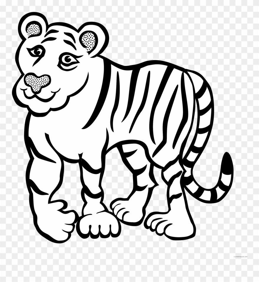 Tiger Outline Animal Free Black White Clipart Images.