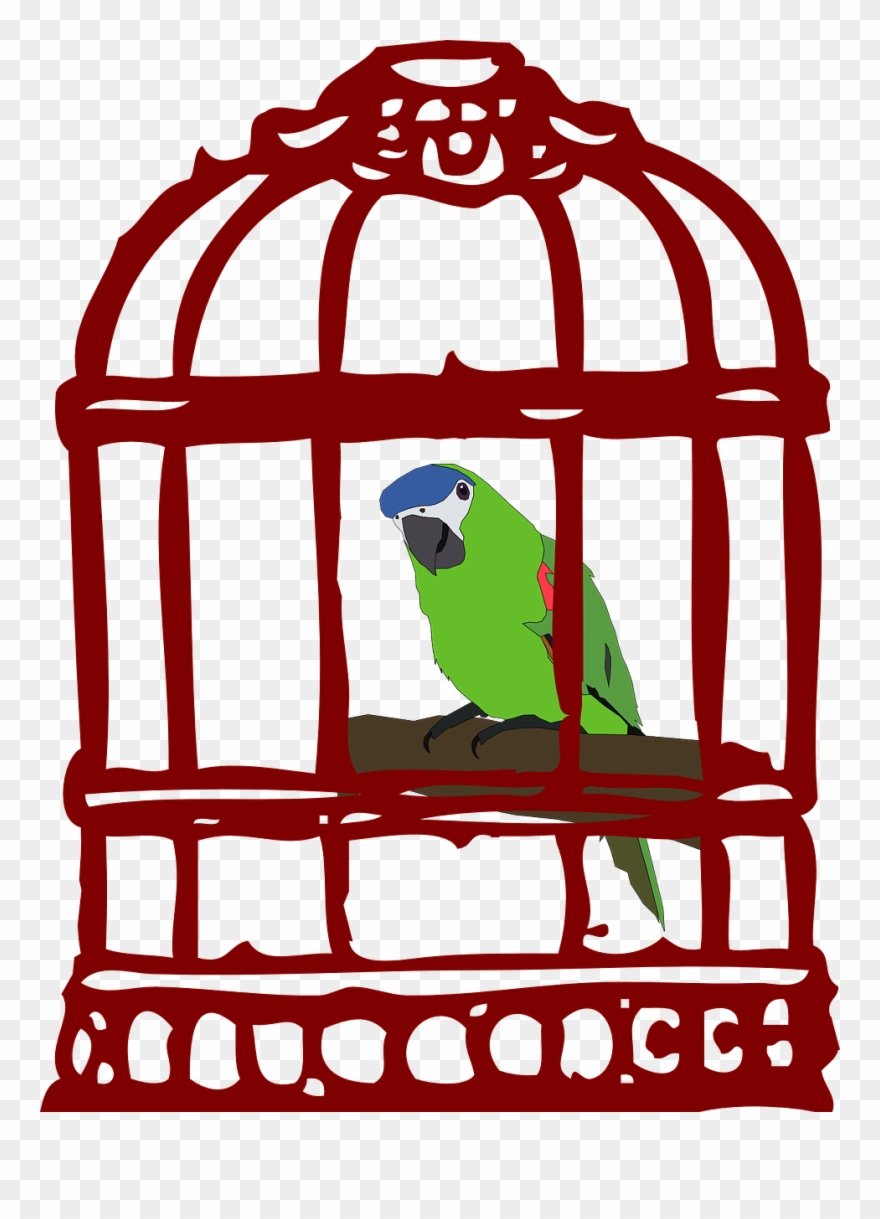 Clipart Black And White Stock Cage Clipart Caged Animal.