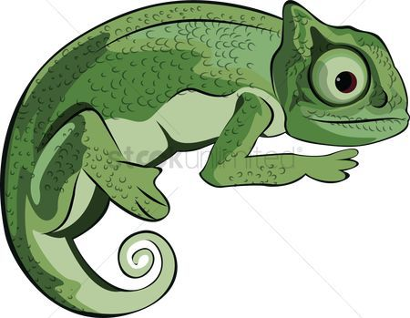 Animal camouflage clipart 1 » Clipart Portal.