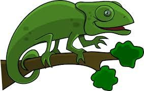 Image result for cute lizard clipart.