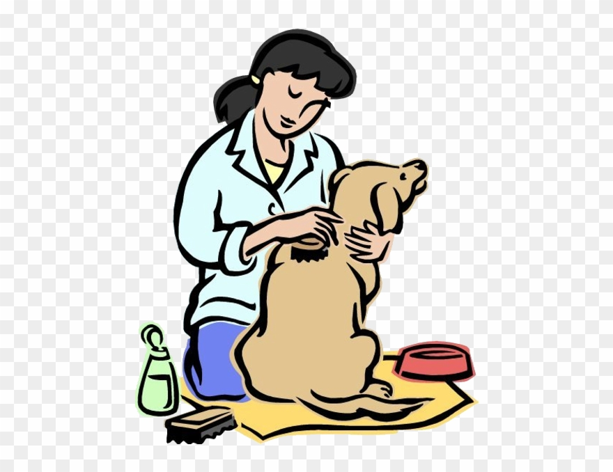 Animal Grooming Cartoon Animal S Homepage T.