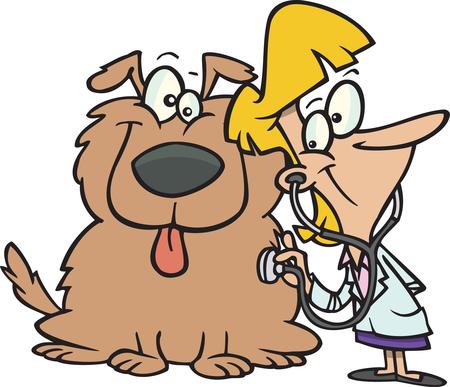 Veterinarian clipart animal caretaker, Veterinarian animal.