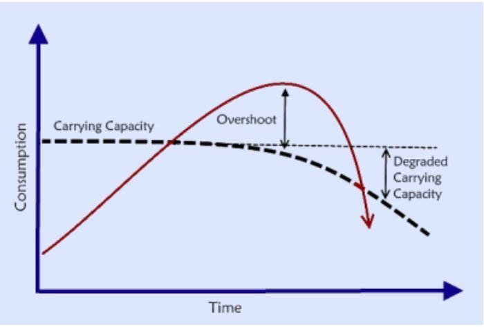 Carrying Capacity, Overshoot and Species Extinction » Peak.