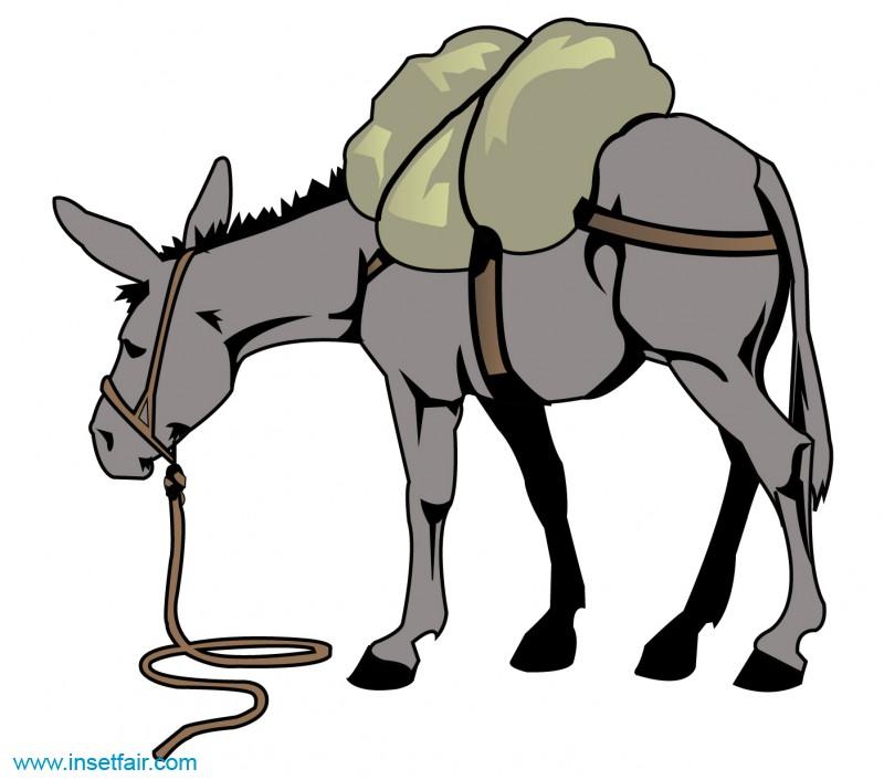 Donkey carrying luggage.