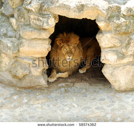 Animal Cave Drawing Clipart.