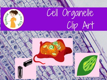 Cell Organelle Clip Art.
