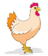 Chickens clipart farm animal, Chickens farm animal.