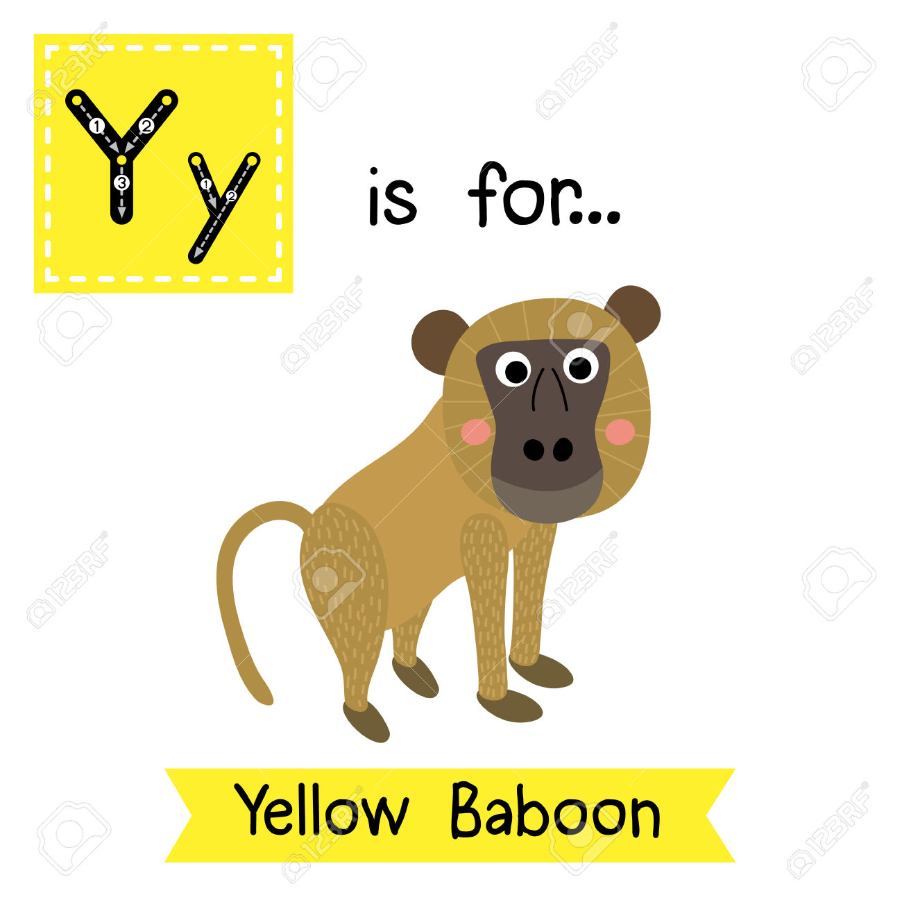 Y Letter Tracing. Yellow Baboon Monkey. Cute Children Zoo Alphabet.