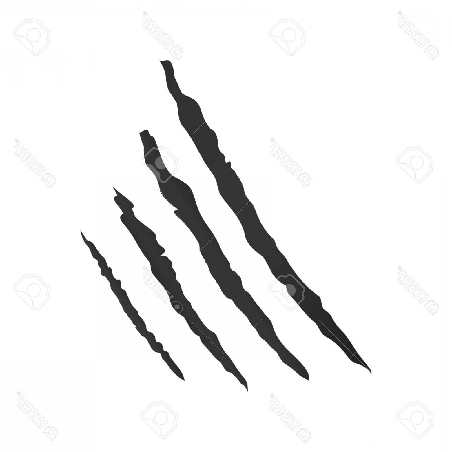 Photostock Vector Claws Scratch Vector Animal Claw Scratch.