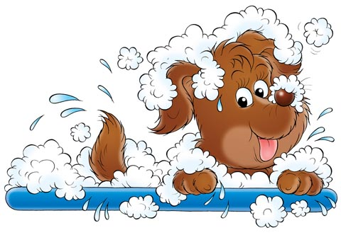 Free Dog Cleaning Cliparts, Download Free Clip Art, Free.