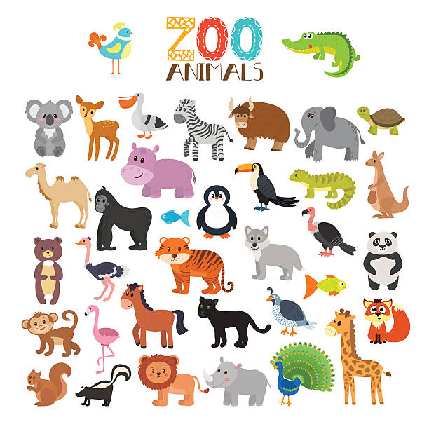 Best Safari Animals Illustrations, Royalty.