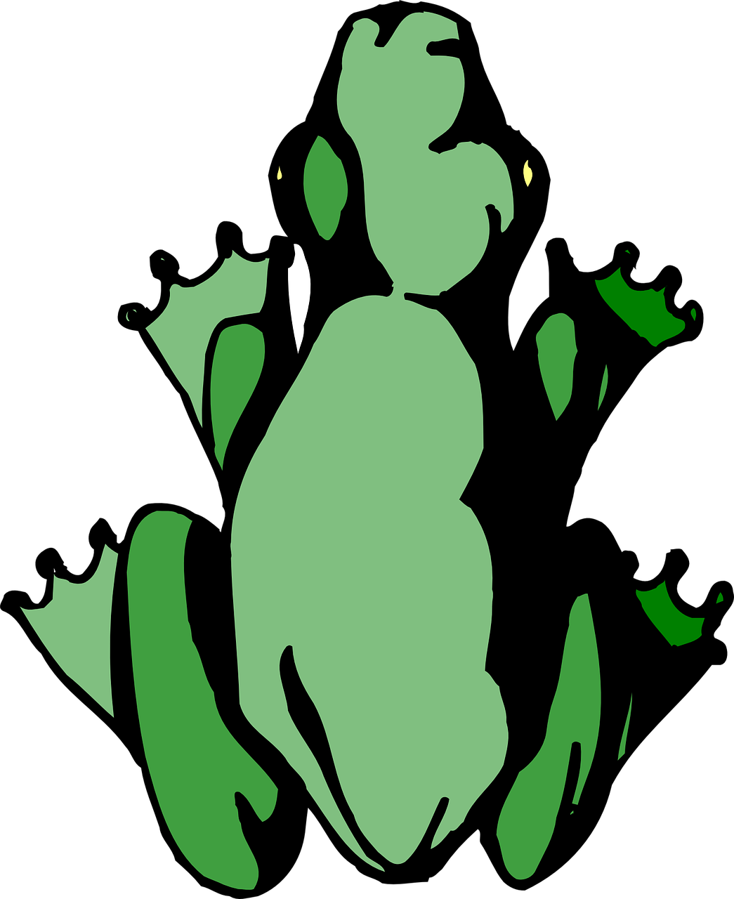 Cartoon Frog Birds Eye View Clipart.