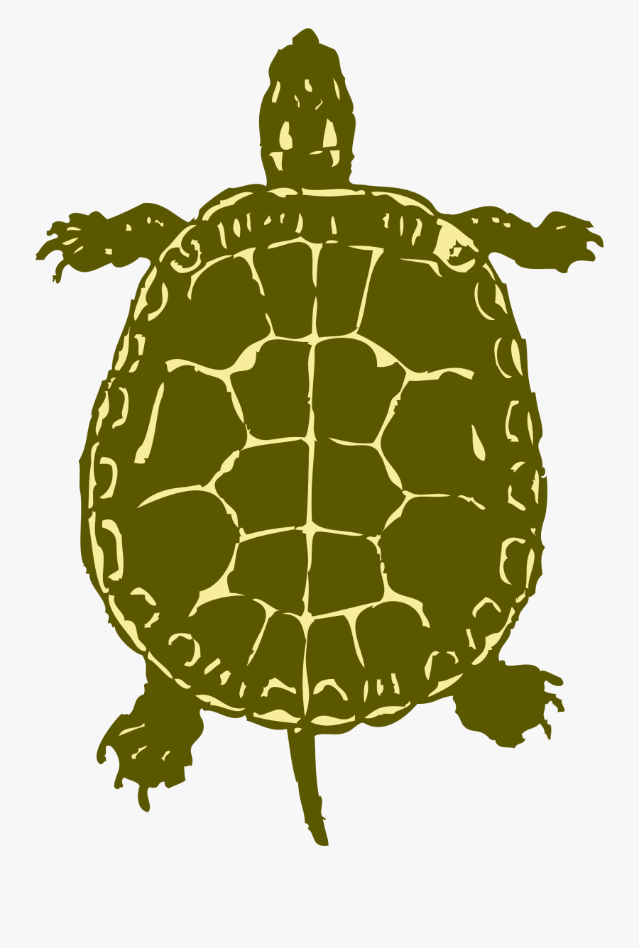 Sea Turtle Clipart Snapping Turtle.