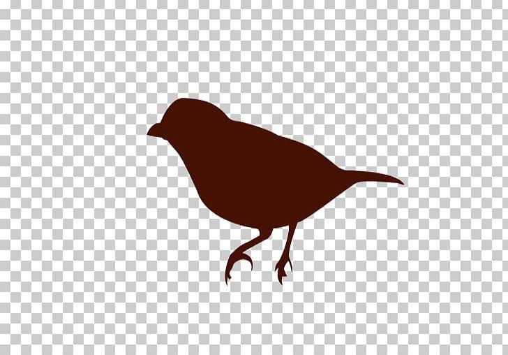 Bird Silhouette PNG, Clipart, Animals, Beak, Bird, Birds Eye.