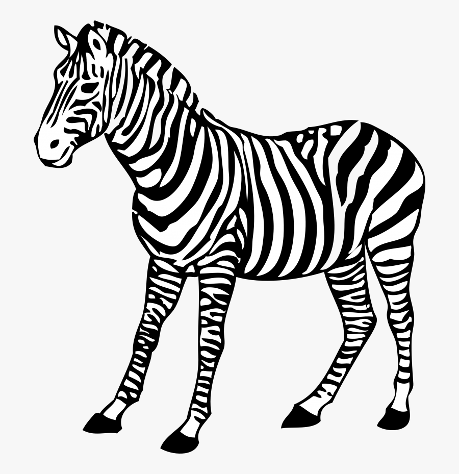 Clip Art Realistic Animal Clipart Black And White.