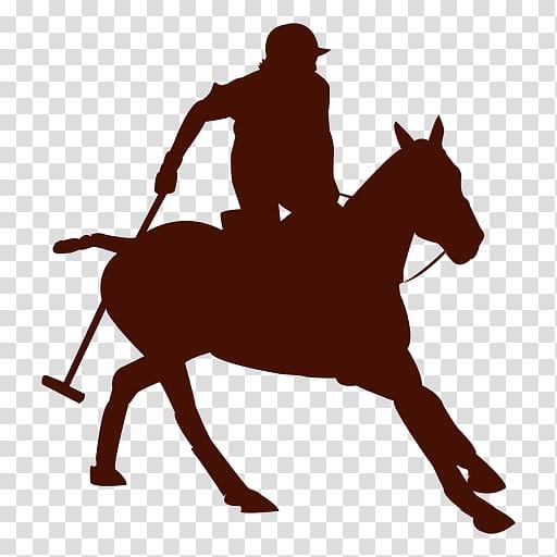 English riding Caballo Polo Argentino Rein , Polo.