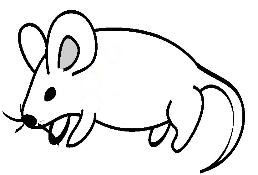 Free Line Drawing Of Animals, Download Free Clip Art, Free.