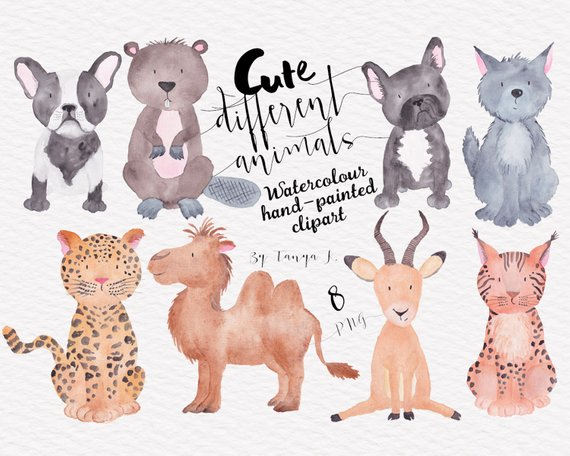 Animal Watercolor, Dog Clipart, Commercial Use, Woodland.