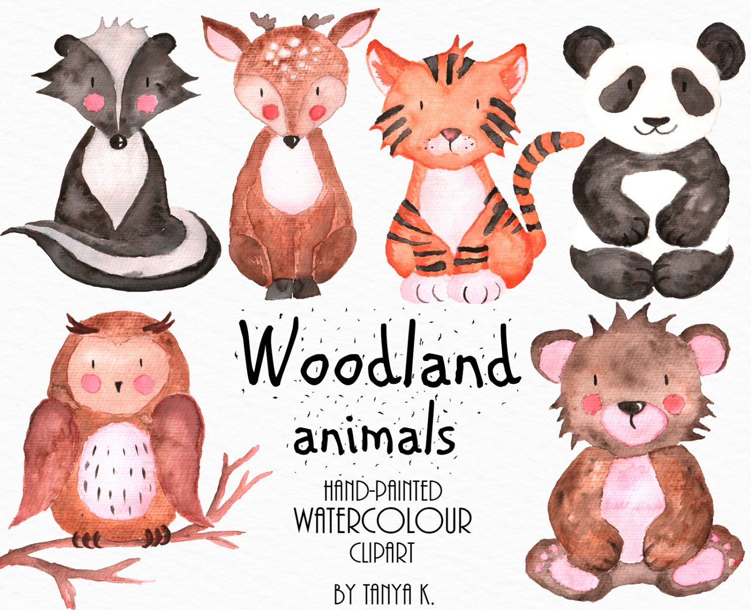 Woodland Animals, Watercolor Clipart, Commercial Use, Owl.
