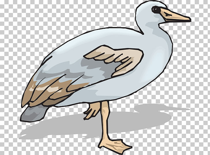 Goose Duck Ganso , goose PNG clipart.