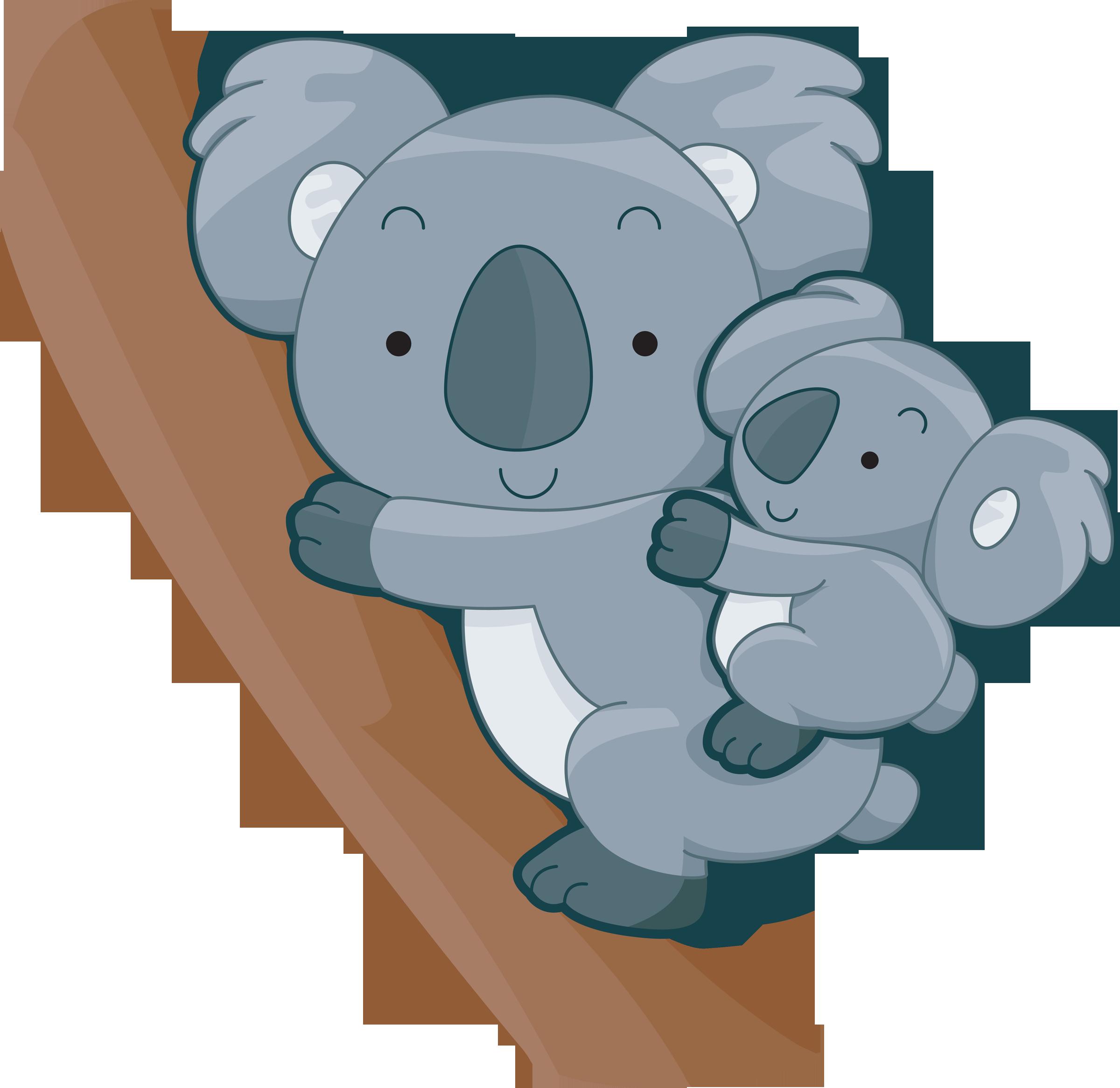 cute koalas.