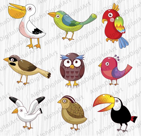 9 Cartoon Birds Clip, Owl clipart, Parrot clipart, Animals.