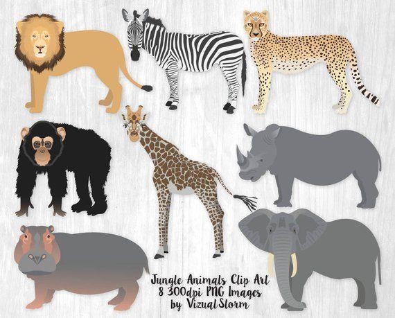 Jungle Animal Clipart Safari Animal Birthday Graphics.