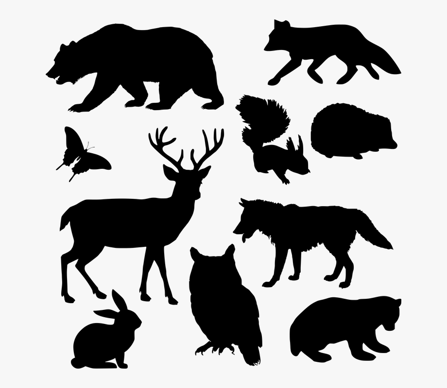 Pinterest Stenciling Animals Silhouette Dxf Files.