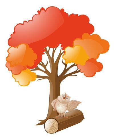 Owl standing on log under tree.