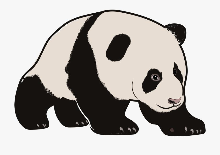 Cartoon Zoo Animals Clipart.