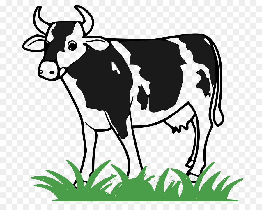 Cow Background clipart.
