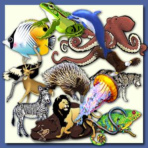 Clipart animals collage, Clipart animals collage Transparent.