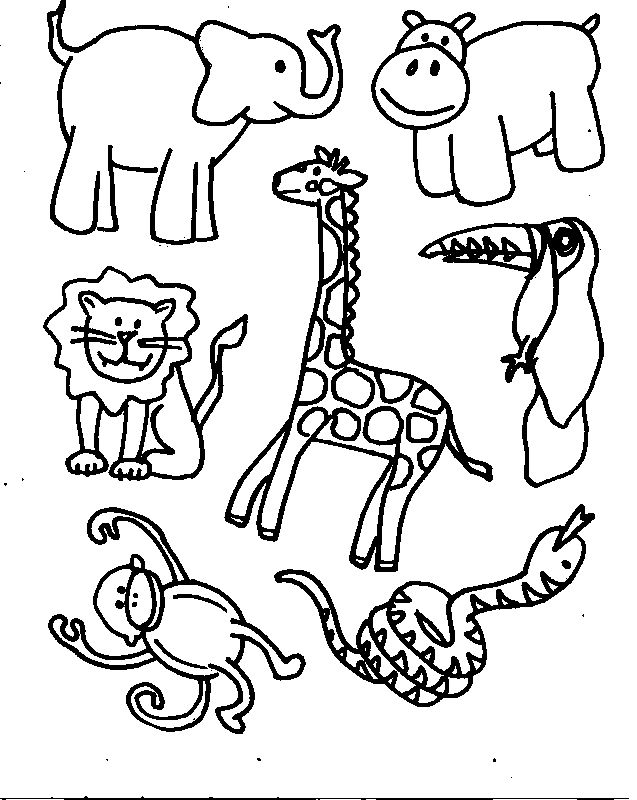 Free Color In Animals, Download Free Clip Art, Free Clip Art.