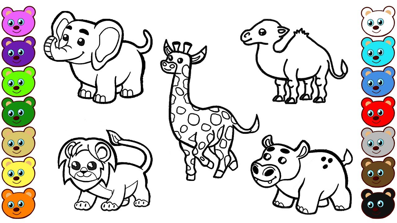 animals coloring.