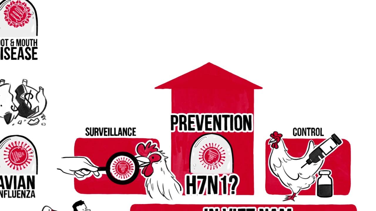 Emergency Centre for Transboundary Animal Disease (ECTAD.