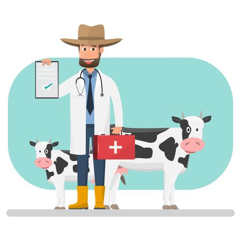 Cow veterinarian checking disease pets and animals inside.