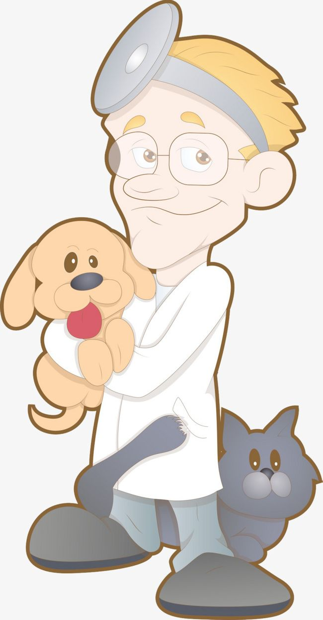Holding A Dog Pet Doctor PNG, Clipart, Animal, Doctor.