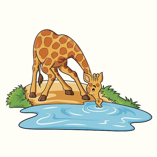 Animals Drinking Water Clipart.