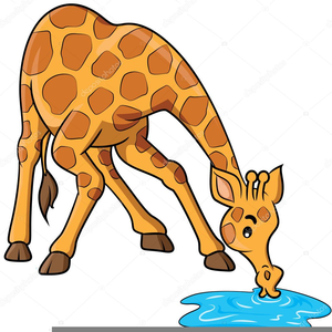 Drinking Animal Picture Clipart.