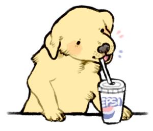 New Dog Drinking Pepsi Memes.