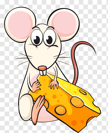 Mouse with cheese, Mouse Rat Cheese Eating, Eating rat free.