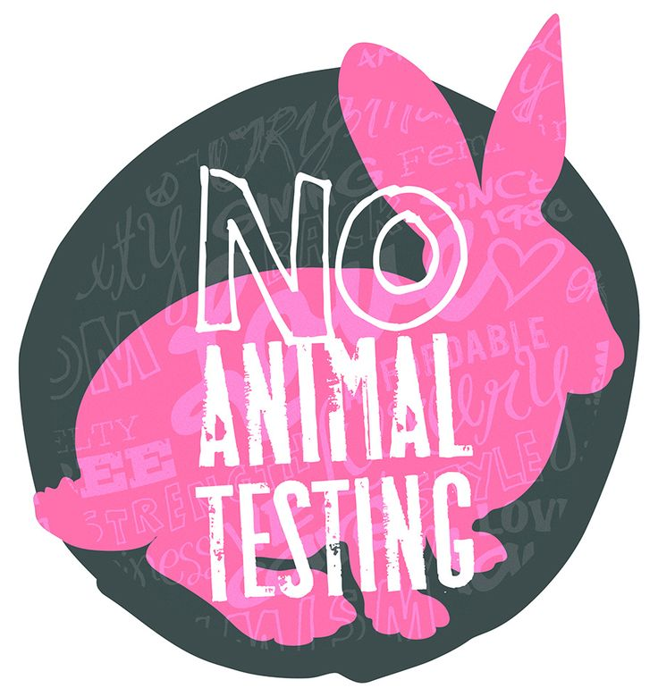 1000+ ideas about Animal Testing on Pinterest.