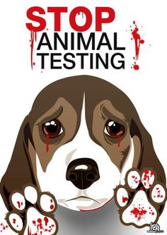 Top secret animal testing clipart.