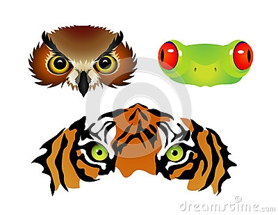 Free Clip Art Animal Eyes.