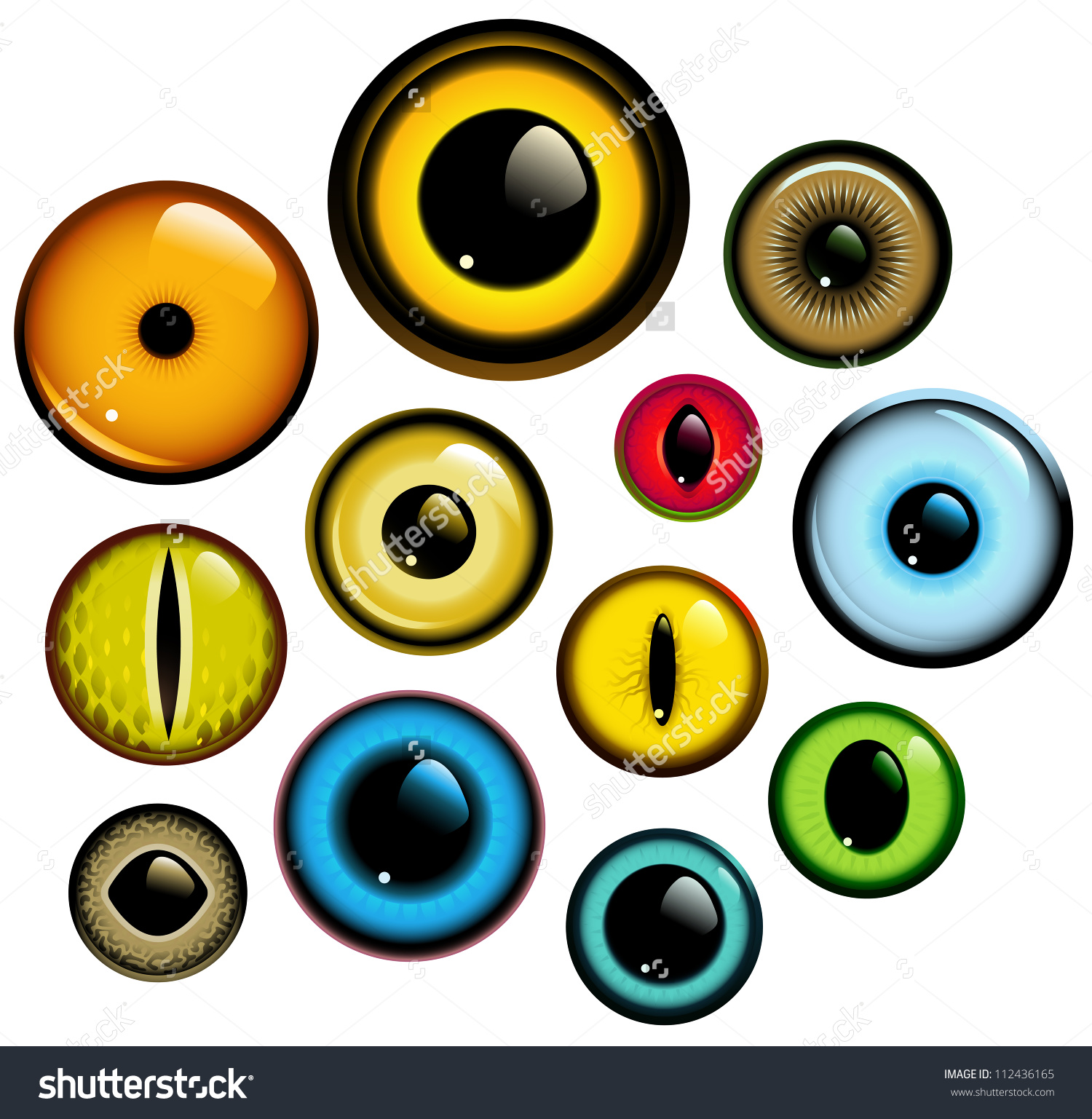 Animal Eye Clipart.