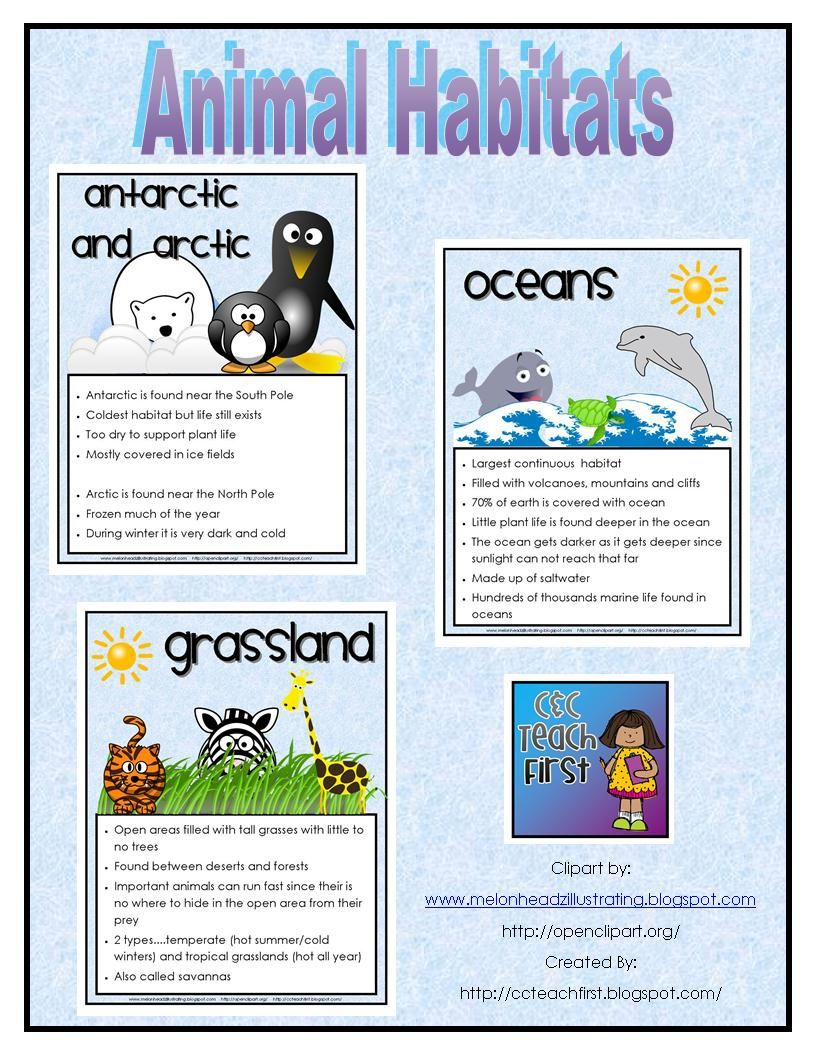 Animal Habitats Facts Posters/Sheets. This includes the.