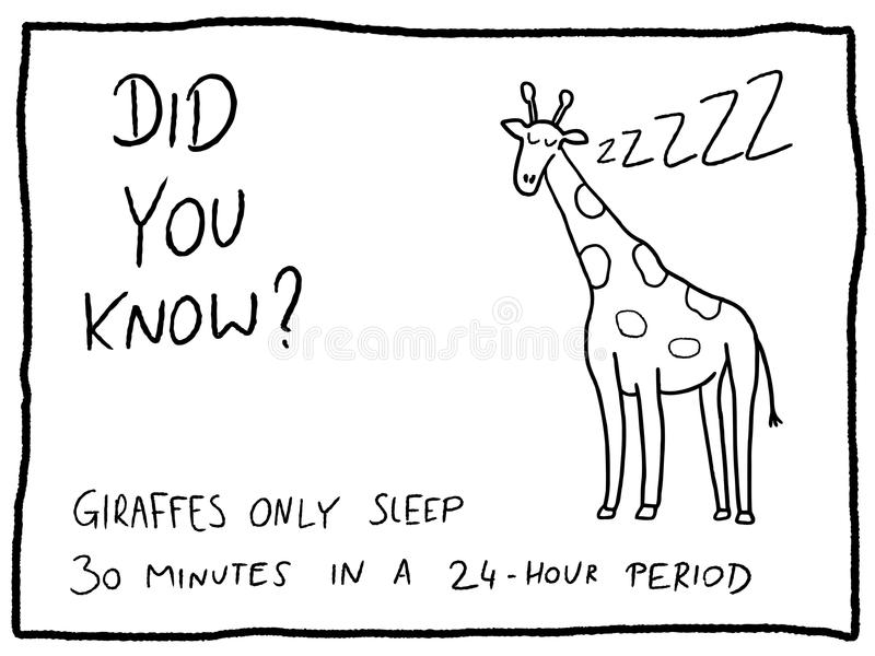 Animal Trivia Stock Illustrations.