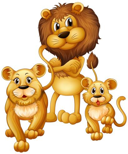 Lion family with one cub.